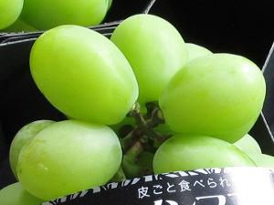 シャインマスカット新潟県産